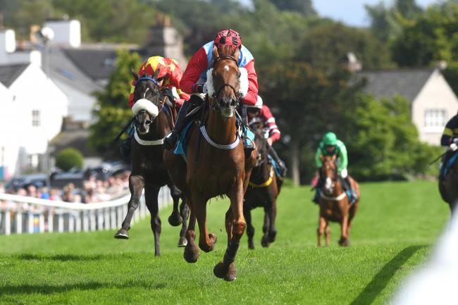 PERFECT DAY: The last two meetings of the season take place at Cartmel Racecourse this weekend