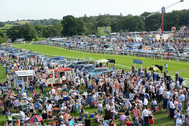 THEM'S THE BREAKS: Racegoers turn up wishing for the best of luck with their punts