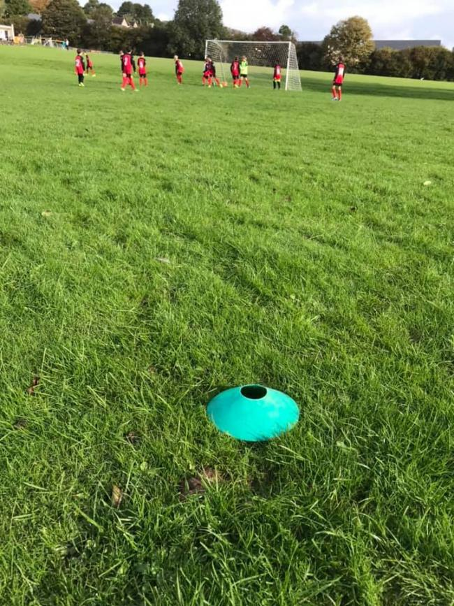 DISGRACEFUL: Dog poo on the pitch at Grange
