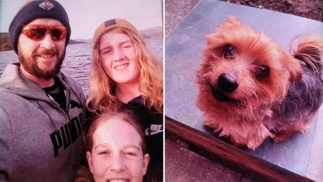 TRAGIC: The Flynn family and their dog Troy