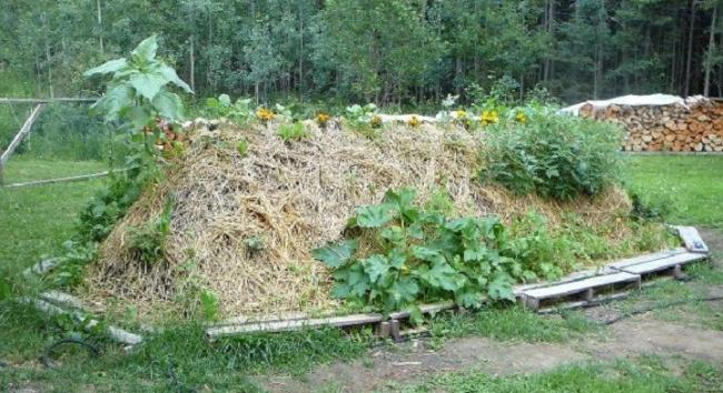 WORKSHOP: the 'Hugel Mound' is a great way to create a highly fertile soil, retain moisture, sequester carbon, and supply nutrients over the years to provide more sustainable growing space