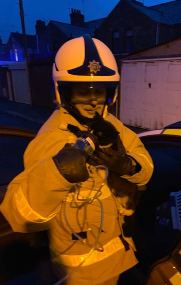 SAVED: A firefighter gives oxygen to a cat saved from a fire in Barrow