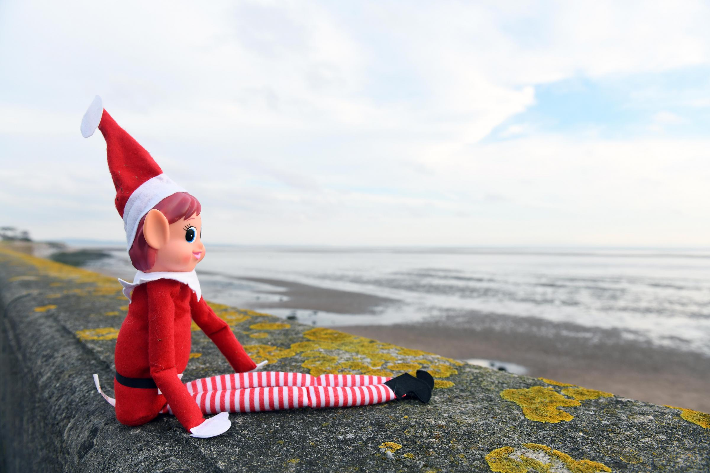 GUESS: Where is Elfis today?