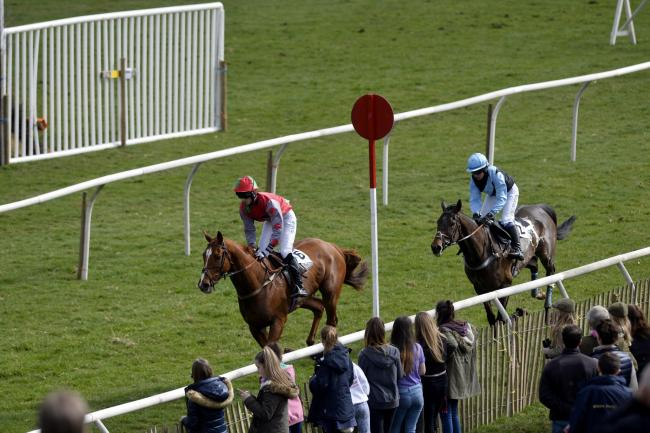 VICTOR: Captain Redbeard (left) upset the odds to win a two-horse race at Kelso 	Picture: Stuart Walker