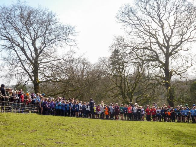 A huge 552 young runners took part