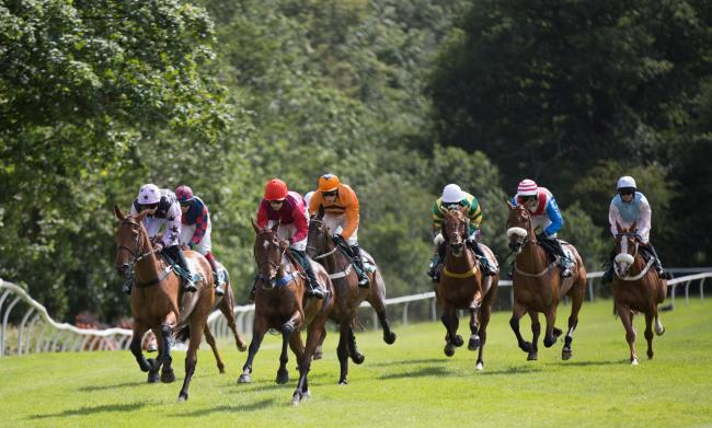 The season at Cartmel racecourse begins on Saturday