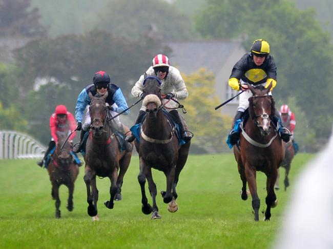 The Campbell and Rowley Cathering and Events Handicap Hurdle Race at Cartmel Races