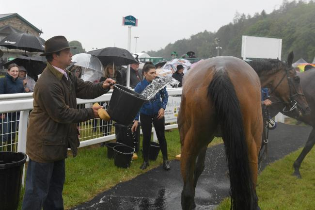 Cartmel trainer James Moffatt has a job with thousands of years of history behind it